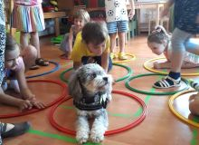 kutyas_kisallatos_tabor_20.jpg